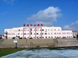 青岛专业音响-青岛中心聋校音视频系统